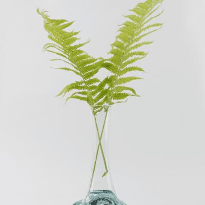 Handblown Glass Vase - Fern